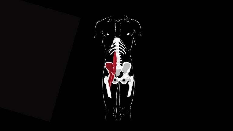 best stretches for hip flexors